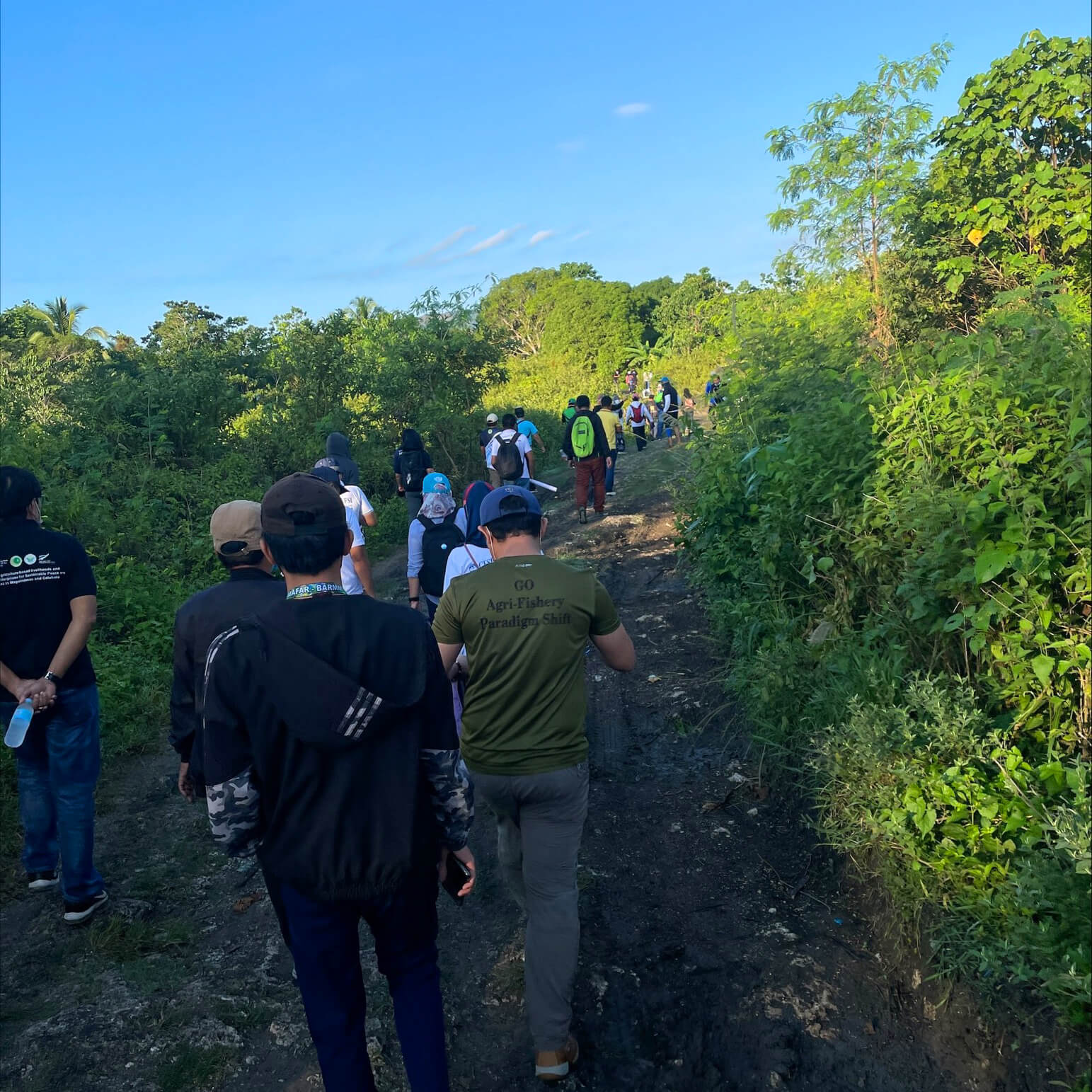 Individuals trekking a muddy dirt road, following a disorganized line.. Around them are green trees and bright blue sky.